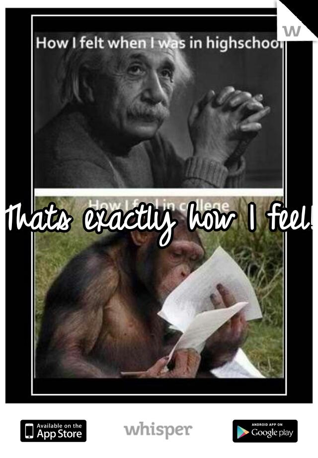 Thats exactly how I feel!