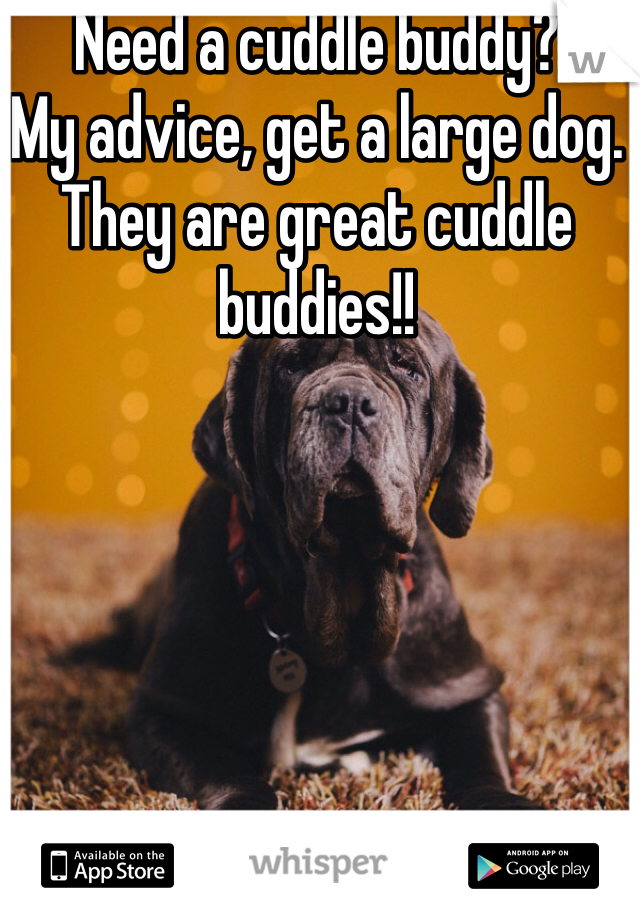 Need a cuddle buddy?  My advice, get a large dog. They are great cuddle buddies!!