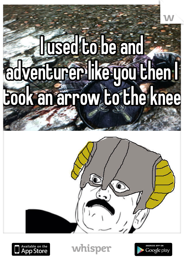 I used to be and adventurer like you then I took an arrow to the knee