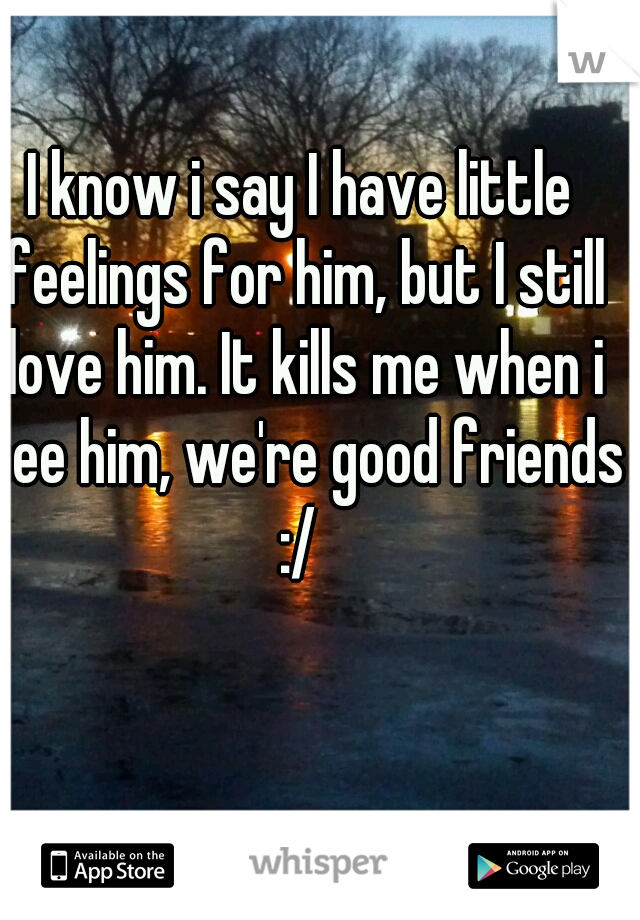 I know i say I have little feelings for him, but I still love him. It kills me when i see him, we're good friends :/