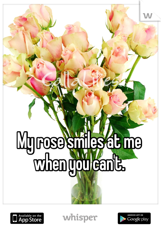 My rose smiles at me when you can't.