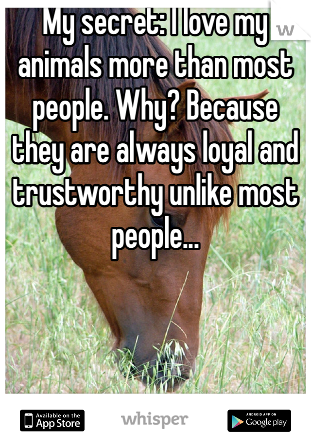 My secret: I love my animals more than most people. Why? Because they are always loyal and trustworthy unlike most people...