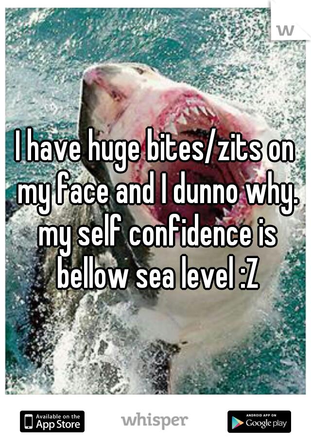 I have huge bites/zits on my face and I dunno why. my self confidence is bellow sea level :Z
