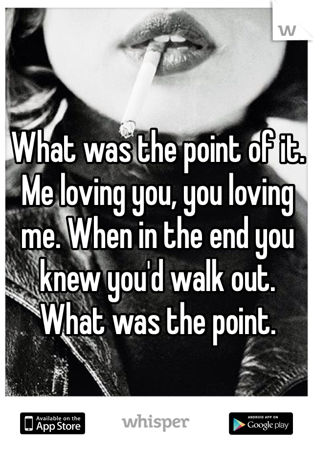 What was the point of it. Me loving you, you loving me. When in the end you knew you'd walk out.  What was the point.