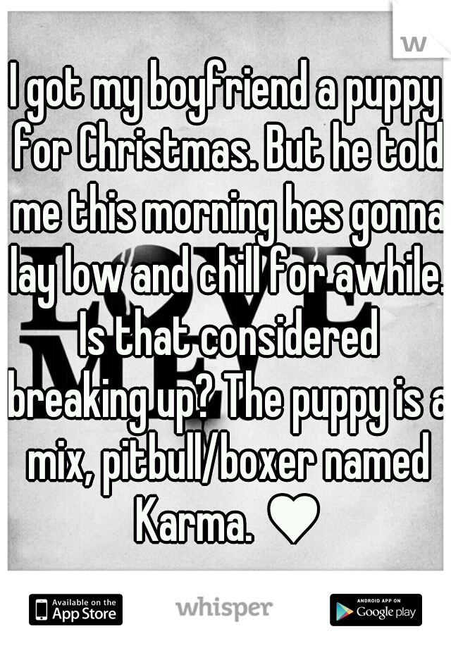 I got my boyfriend a puppy for Christmas. But he told me this morning hes gonna lay low and chill for awhile. Is that considered breaking up? The puppy is a mix, pitbull/boxer named Karma. ♥