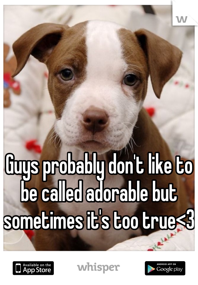 Guys probably don't like to be called adorable but sometimes it's too true<3