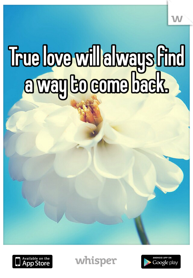 True love will always find a way to come back.