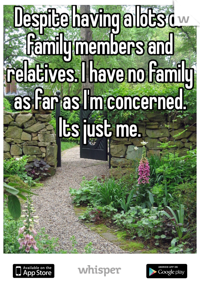 Despite having a lots of family members and relatives. I have no family as far as I'm concerned. Its just me.