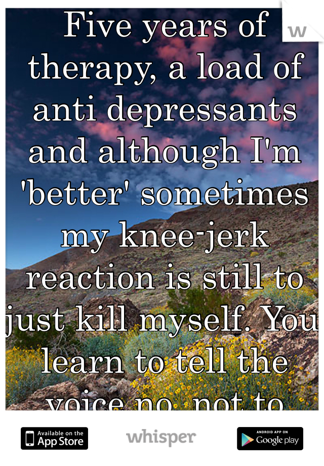 Five years of therapy, a load of anti depressants and although I'm 'better' sometimes my knee-jerk reaction is still to just kill myself. You learn to tell the voice no, not to make it go away.