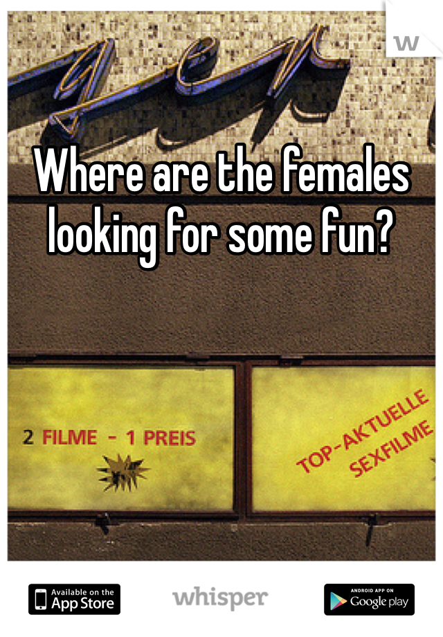Where are the females looking for some fun?