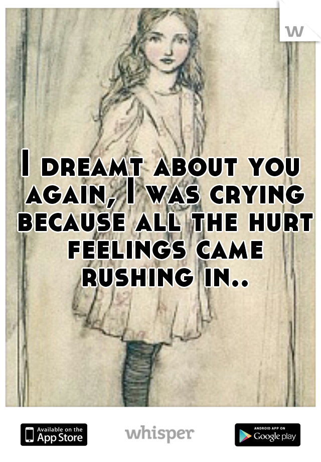 I dreamt about you again, I was crying because all the hurt feelings came rushing in..