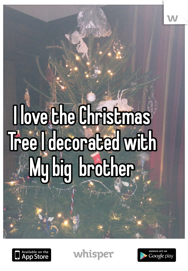 I love the Christmas  Tree I decorated with  My big  brother