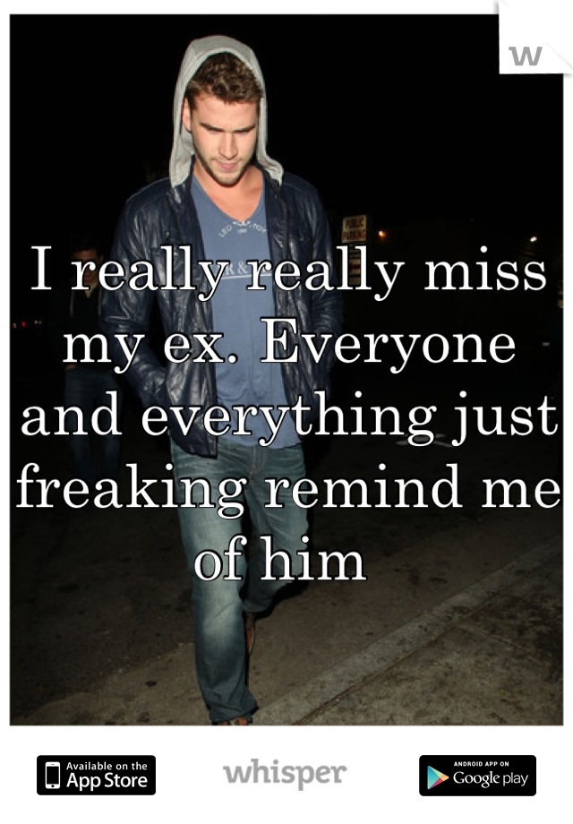 I really really miss my ex. Everyone and everything just freaking remind me of him
