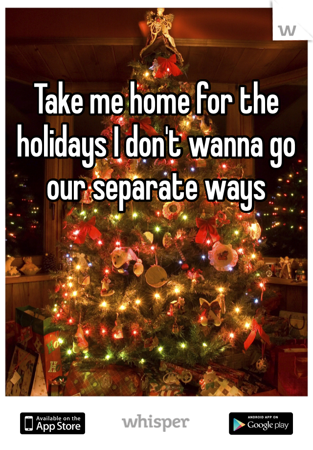 Take me home for the holidays I don't wanna go our separate ways