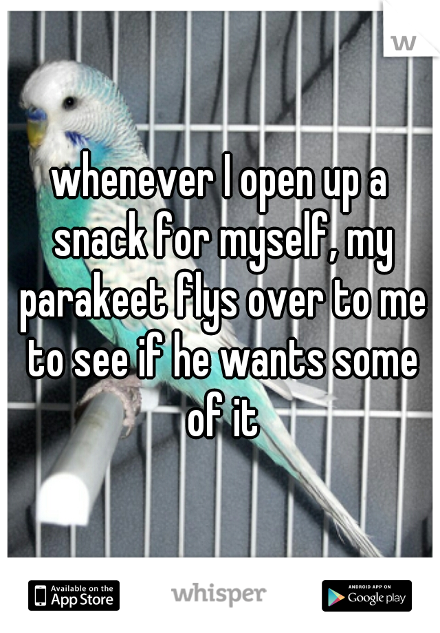 whenever I open up a snack for myself, my parakeet flys over to me to see if he wants some of it