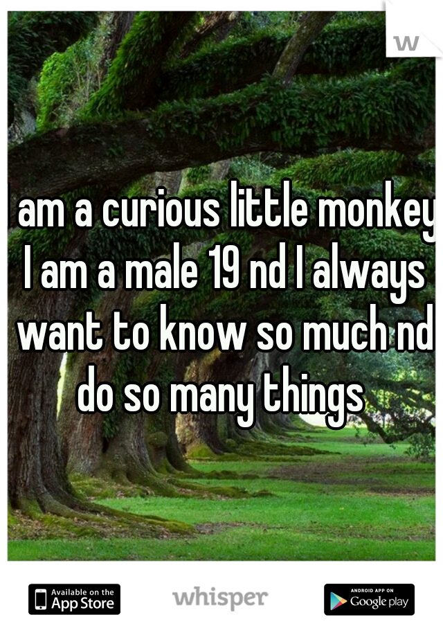 I am a curious little monkey I am a male 19 nd I always want to know so much nd do so many things