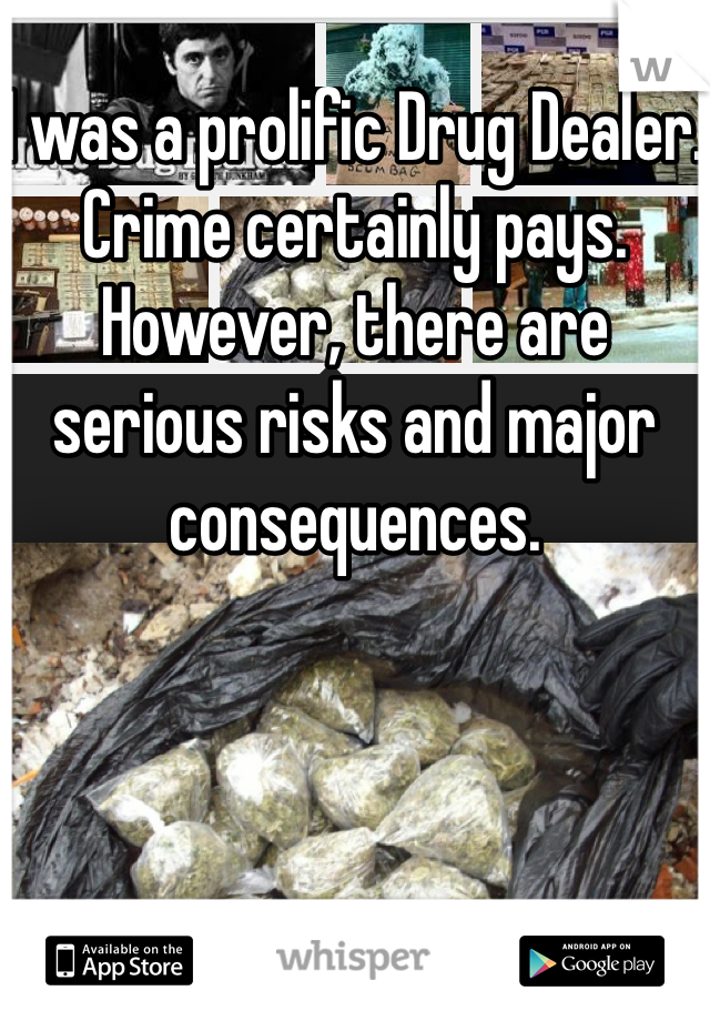 I was a prolific Drug Dealer.  Crime certainly pays.  However, there are serious risks and major consequences.