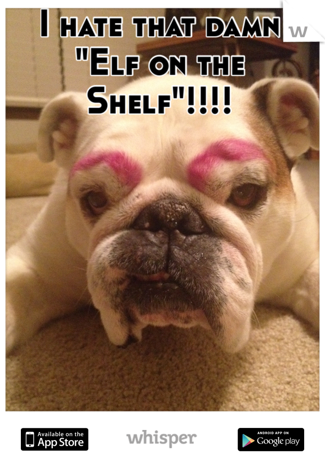 "I hate that damn ""Elf on the Shelf""!!!!"