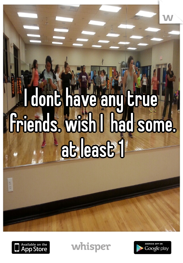 I dont have any true friends. wish I  had some. at least 1