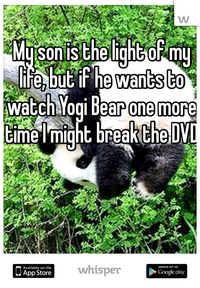 My son is the light of my life, but if he wants to watch Yogi Bear one more time I might break the DVD