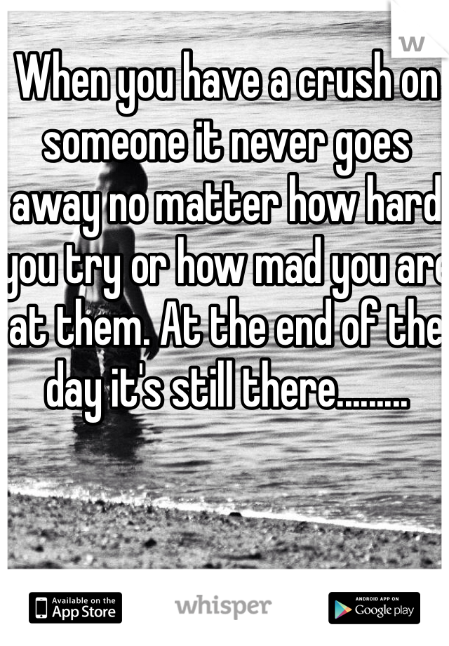When you have a crush on someone it never goes away no matter how hard you try or how mad you are at them. At the end of the day it's still there.........