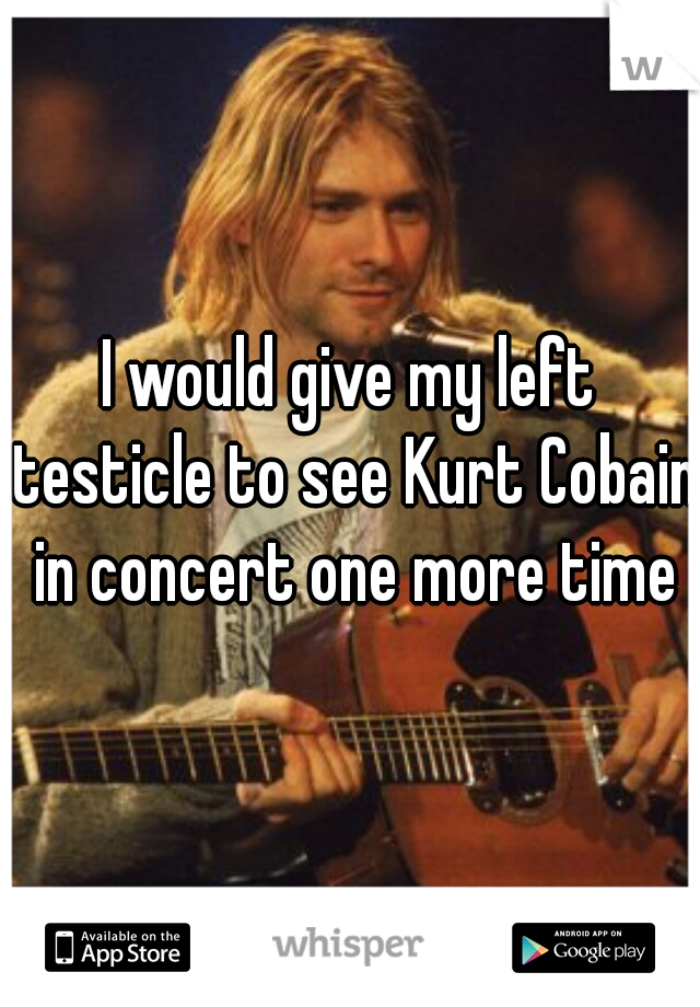 I would give my left testicle to see Kurt Cobain in concert one more time