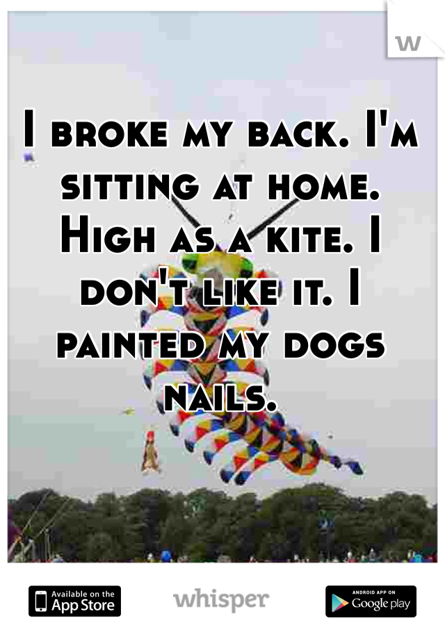 I broke my back. I'm sitting at home. High as a kite. I don't like it. I painted my dogs nails.