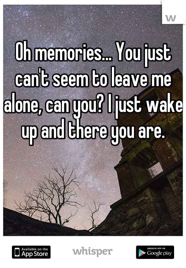 Oh memories... You just can't seem to leave me alone, can you? I just wake up and there you are.