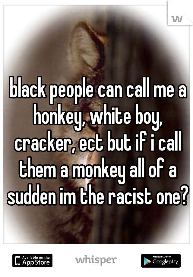 black people can call me a honkey, white boy, cracker, ect but if i call them a monkey all of a sudden im the racist one?