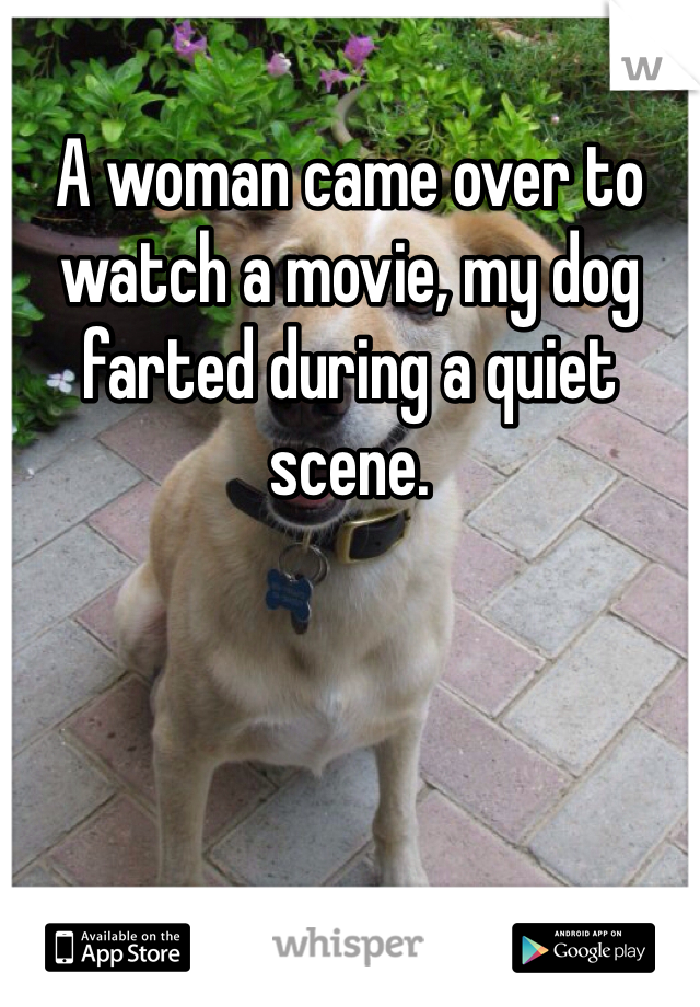 A woman came over to watch a movie, my dog farted during a quiet scene.