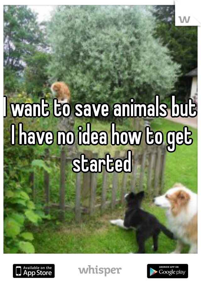 I want to save animals but I have no idea how to get started