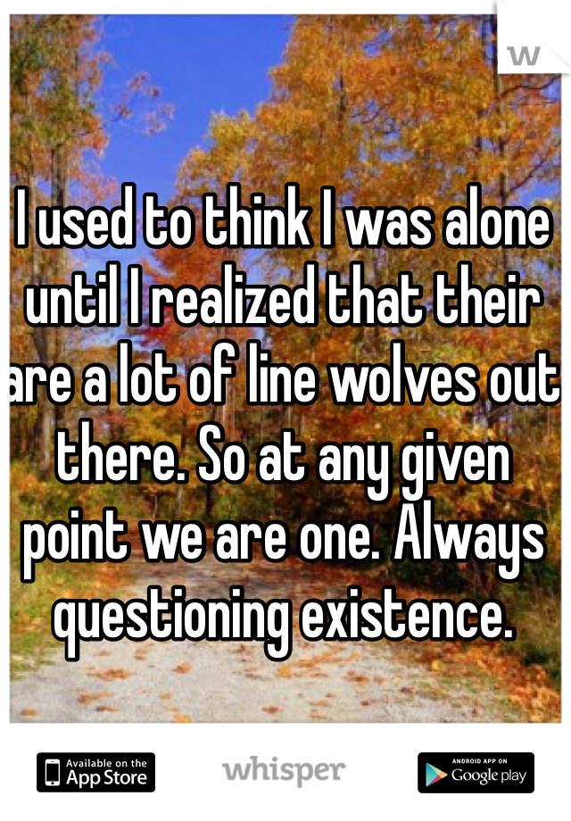 I used to think I was alone until I realized that their are a lot of line wolves out there. So at any given point we are one. Always questioning existence.