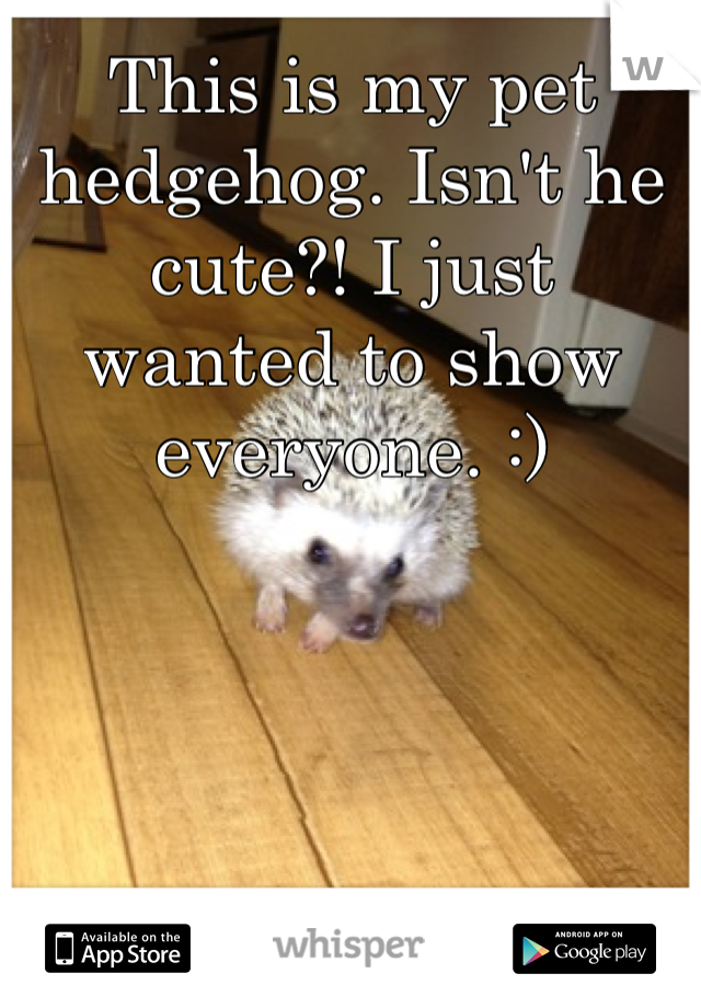 This is my pet hedgehog. Isn't he cute?! I just wanted to show everyone. :)