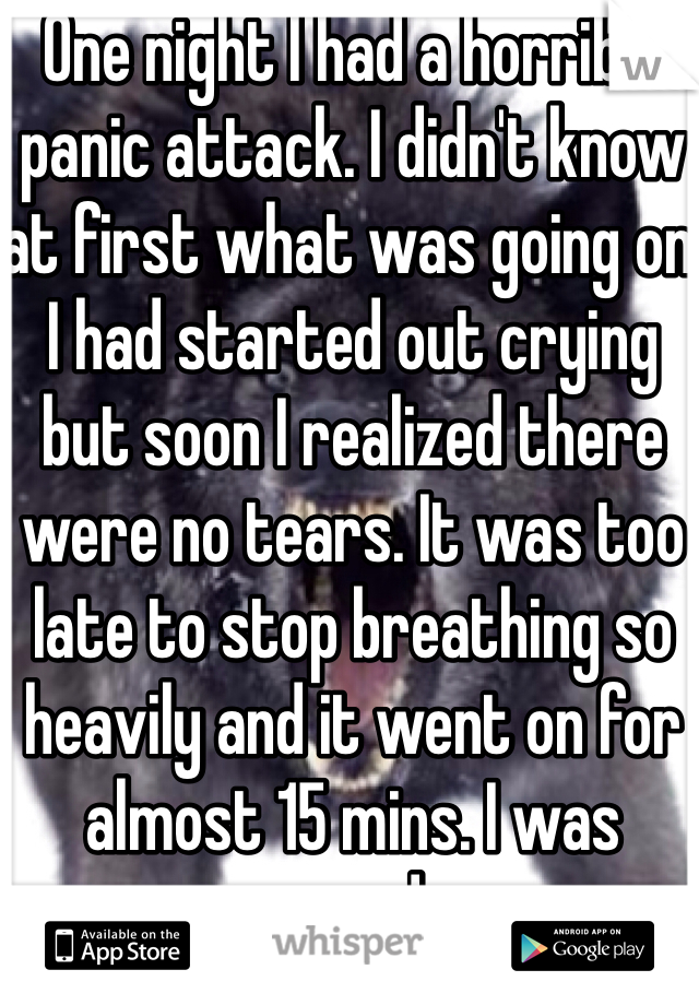 One night I had a horrible panic attack. I didn't know at first what was going on. I had started out crying but soon I realized there were no tears. It was too late to stop breathing so heavily and it went on for almost 15 mins. I was scared ..