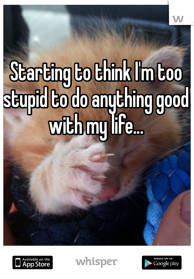 Starting to think I'm too stupid to do anything good with my life...
