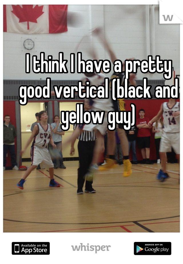 I think I have a pretty good vertical (black and yellow guy)