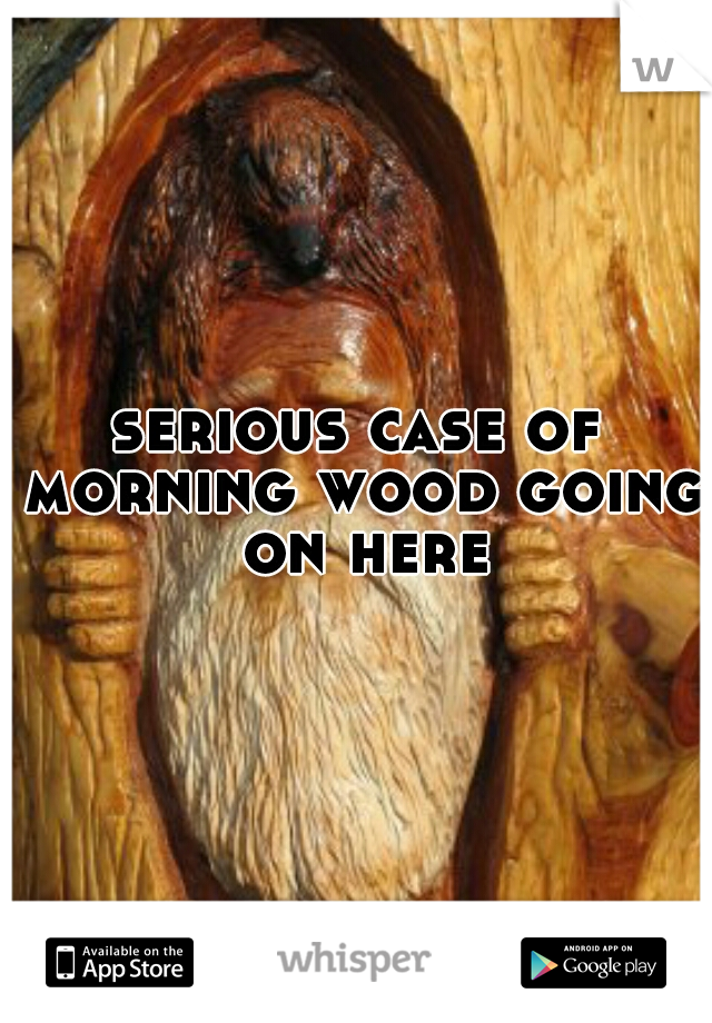 serious case of morning wood going on here