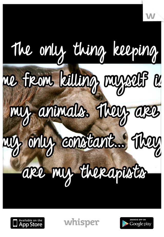 The only thing keeping me from killing myself is my animals. They are my only constant... They are my therapists