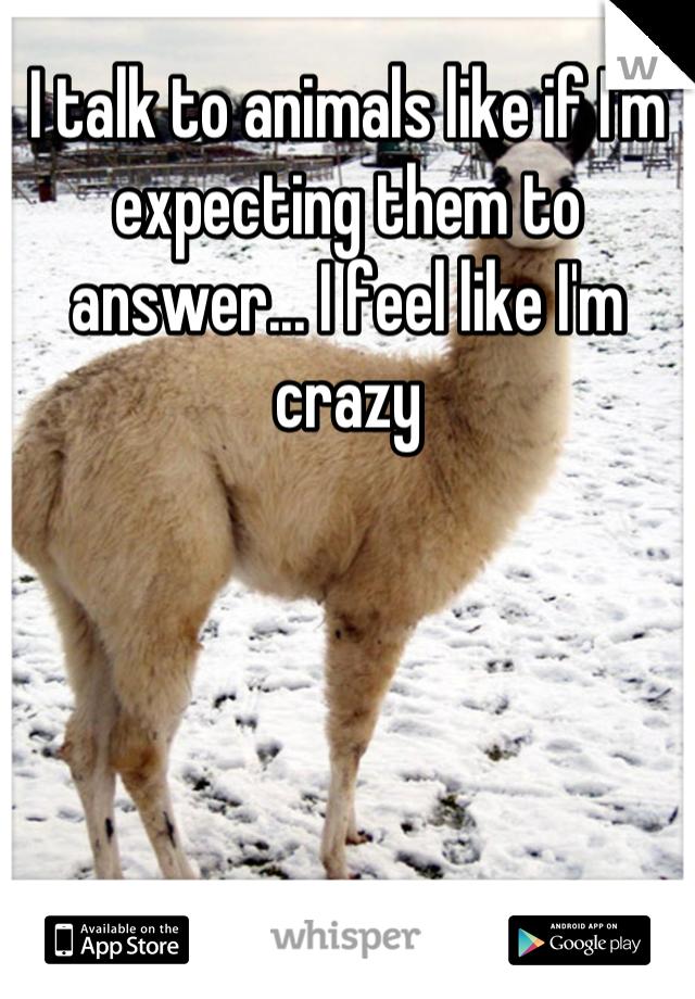 I talk to animals like if I'm expecting them to answer... I feel like I'm crazy