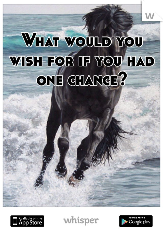 What would you wish for if you had one chance?