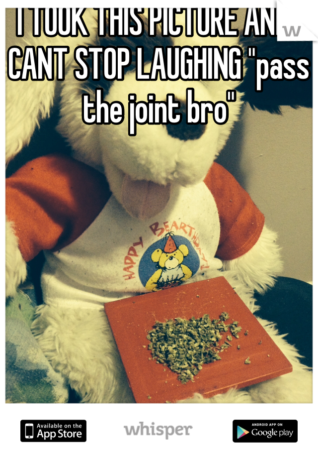 "I TOOK THIS PICTURE AND I CANT STOP LAUGHING ""pass the joint bro"""