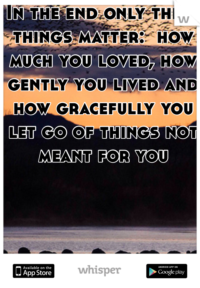 In the end only three things matter:  how much you loved, how gently you lived and how gracefully you let go of things not meant for you