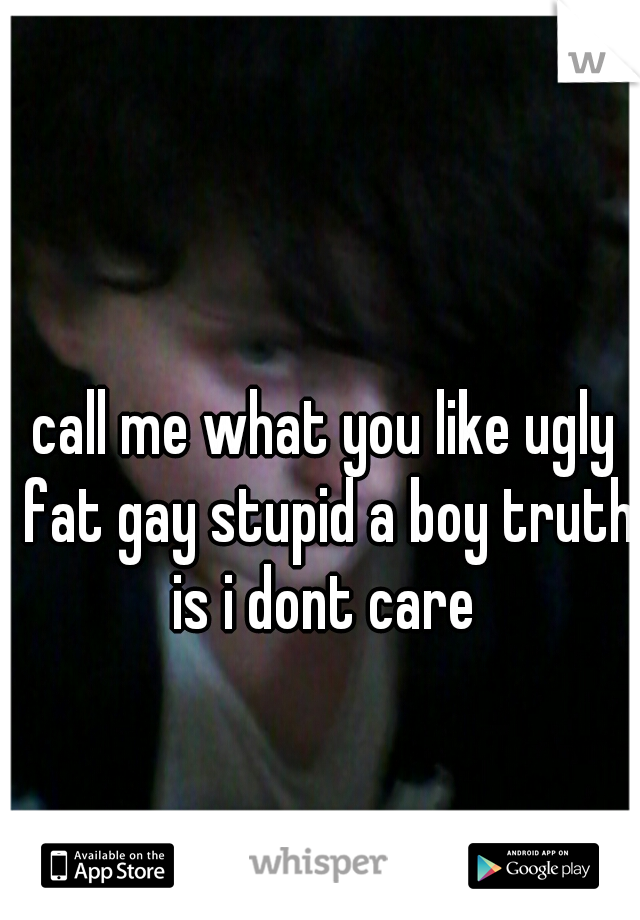 call me what you like ugly fat gay stupid a boy truth is i dont care