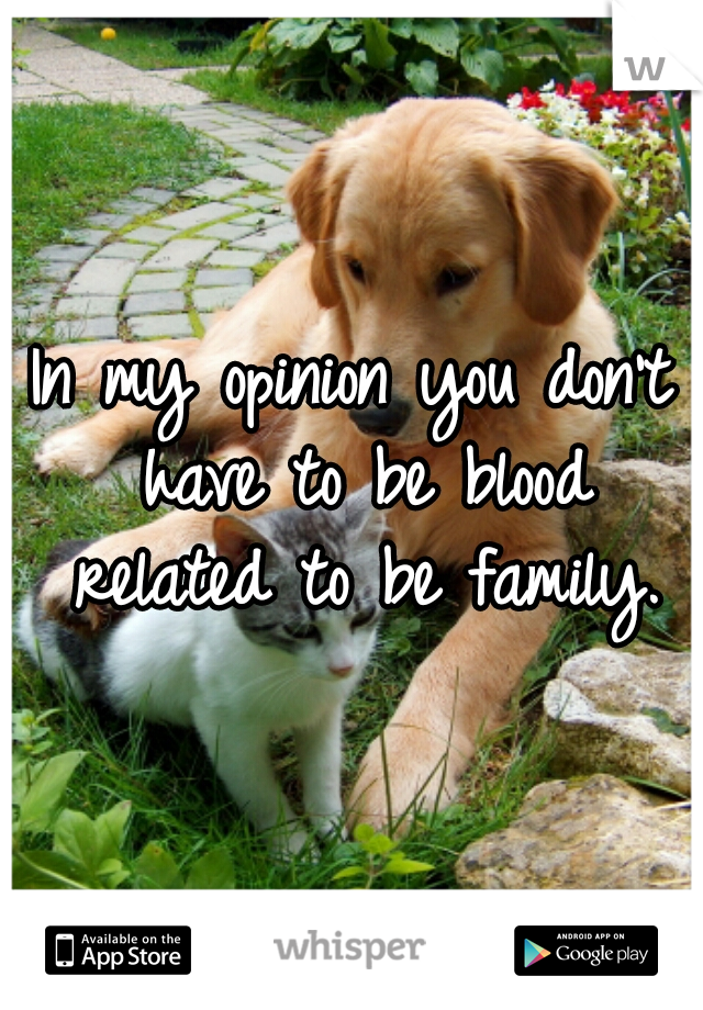 In my opinion you don't have to be blood related to be family.