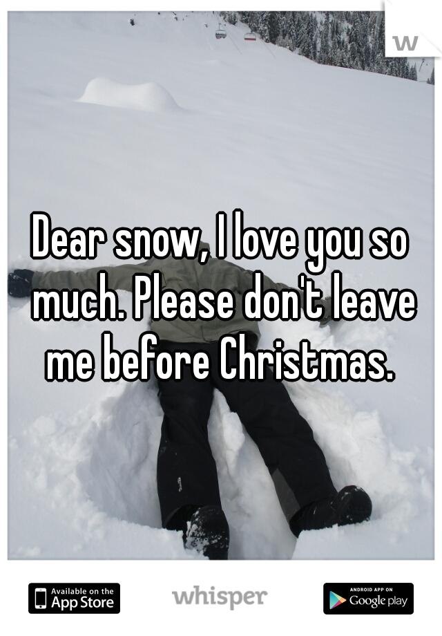 Dear snow, I love you so much. Please don't leave me before Christmas.