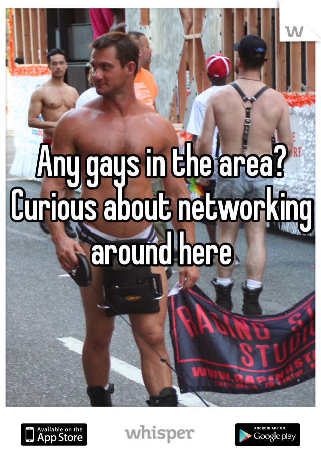 Any gays in the area? Curious about networking around here
