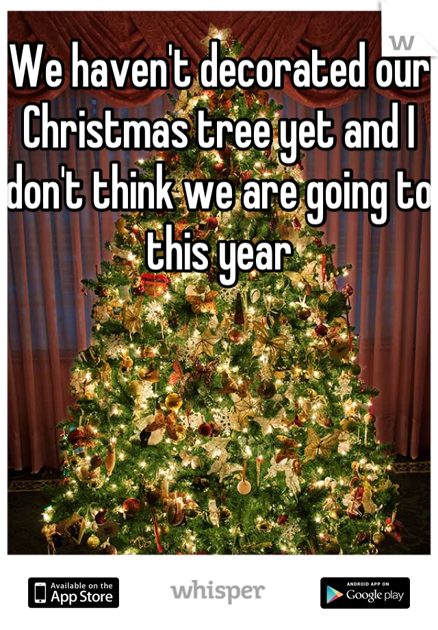 We haven't decorated our Christmas tree yet and I don't think we are going to this year