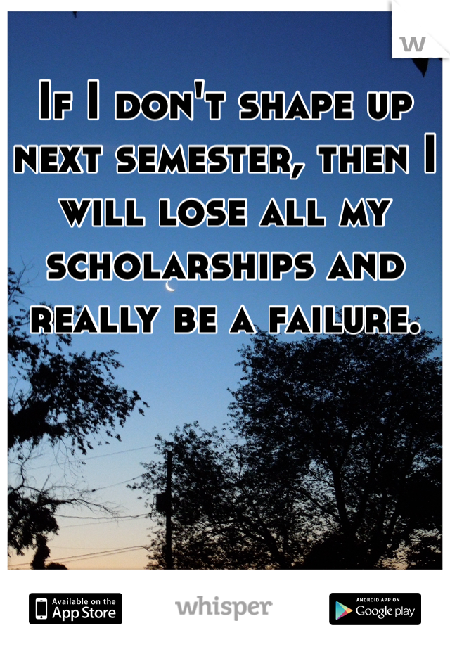 If I don't shape up next semester, then I will lose all my scholarships and really be a failure.