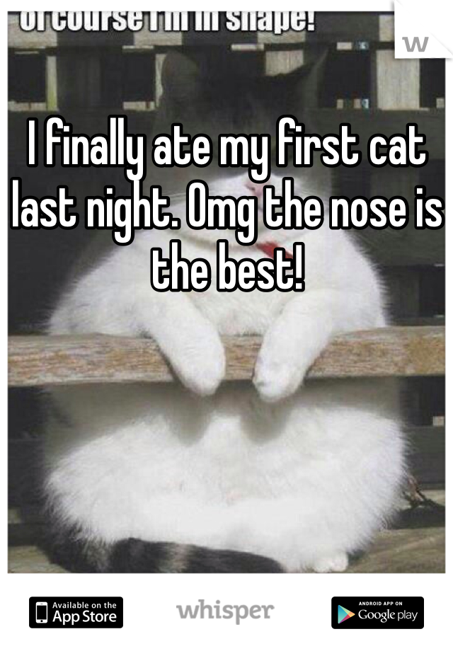 I finally ate my first cat last night. Omg the nose is the best!