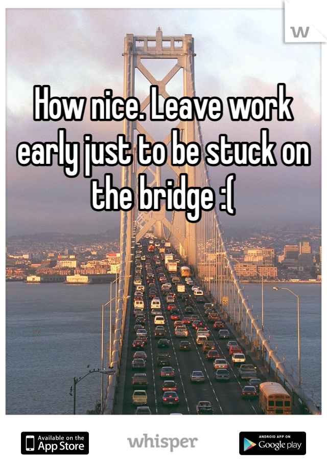 How nice. Leave work early just to be stuck on the bridge :(